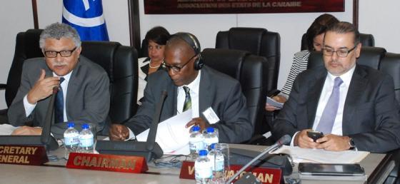 XXIX Reunión del Consejo de Representantes Nacionales del Fondo Especial de la AEC
