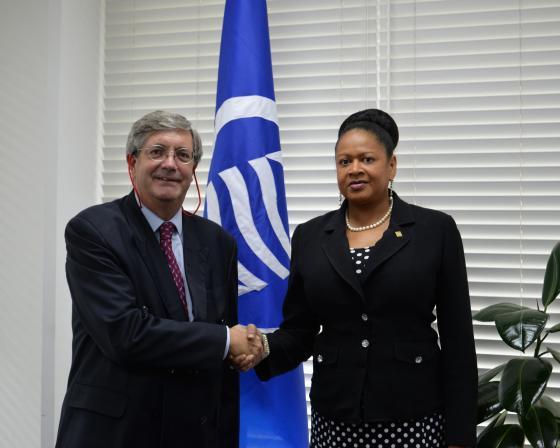 La Secrétaire Générale reçoit une visite de courtoisie de l'Ambassadeur de la République du Chili