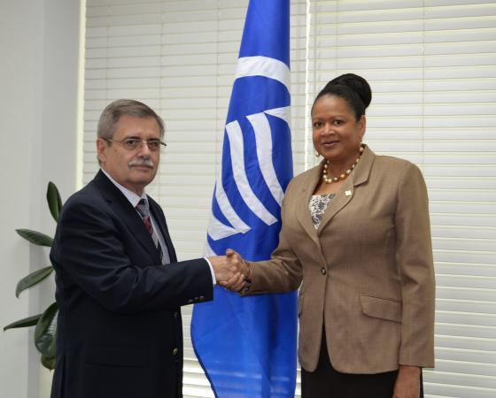 La Secrétaire Générale reçoit une visite de courtoisie de l'Ambassadeur de la République de Cuba