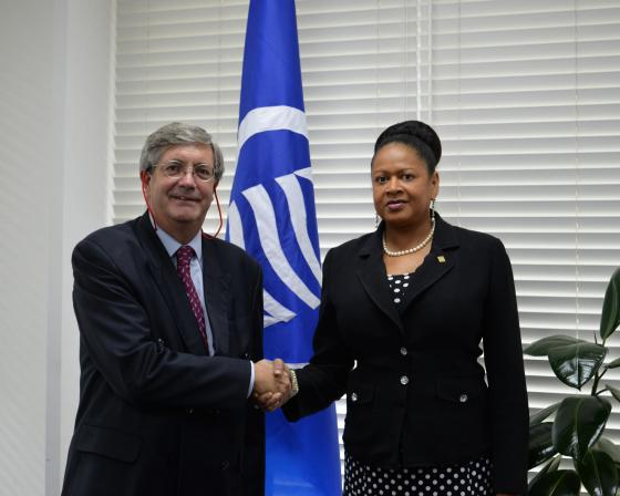 Secretary General receives a courtesy visit from the Chilean Ambassador